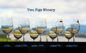 2 figs winery