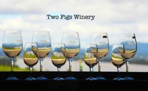 2 figs winery